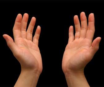 Cómo interpretar las líneas de la mano